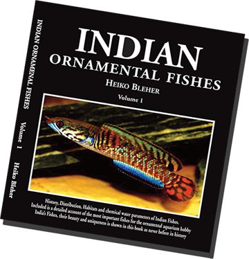 Indian Ornamental Fishes